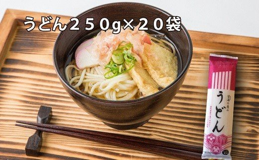 【愛知県産小麦きぬあかり使用】乾麺(碧海の恵み うどん)セット5kg(250g×20袋)H008-021