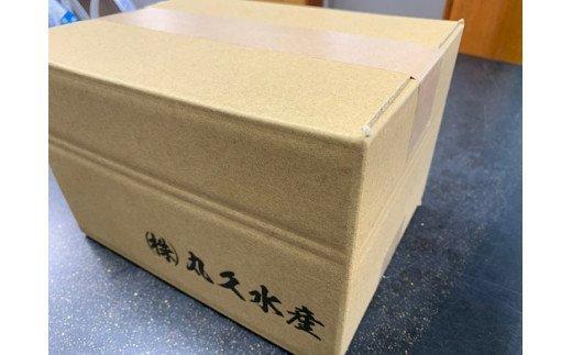 【コロナ支援】三河しらす 1.4kg(1kg箱入+400g化粧箱入) H018-006