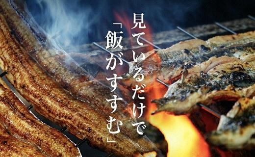 U005.一色産うなぎ職人手焼(蒲焼4尾)
