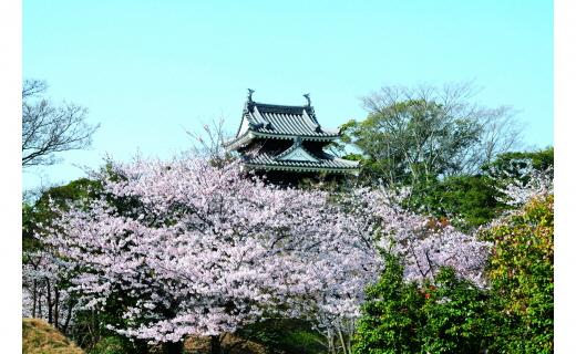 歴史民俗資料館の建設(西尾城跡整備)に関する事業