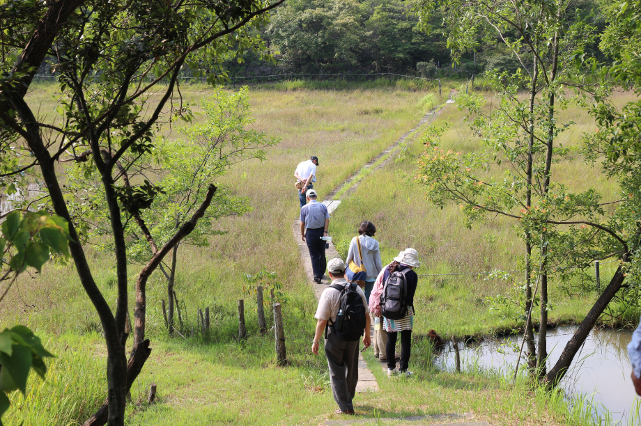 市東部の丘陵地における緑豊かな自然環境の保全の推進