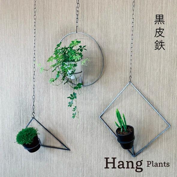 GRAVIRoN Hang Plants シリーズ Triangle/Diamond/Round セット 黒皮鉄(プランツハンガー)