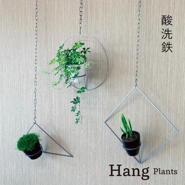 GRAVIRoN Hang Plants シリーズ Triangle/Diamond/Round セット 酸洗鉄(プランツハンガー)