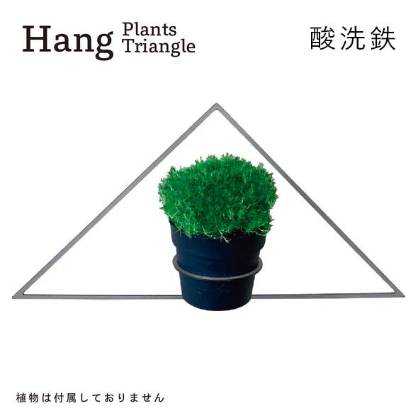 GRAVIRoN Hang Plants シリーズ Triangle 酸洗鉄(プランツハンガー)