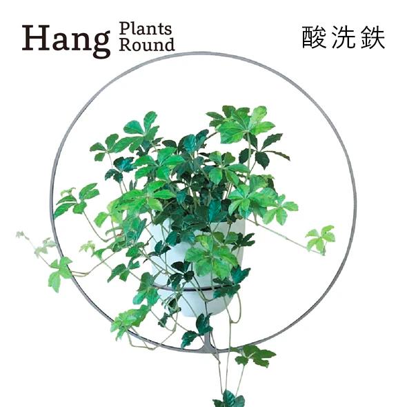 GRAVIRoN Hang Plants シリーズ Round 酸洗鉄(プランツハンガー)