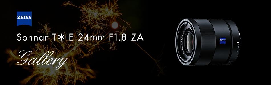 デジタル一眼カメラα [Eマウント] 用レンズ Sonnar T* E 24mm F1.8 ZA