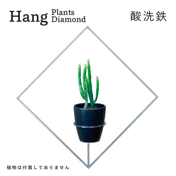GRAVIRoN Hang Plants シリーズ Diamond 酸洗鉄(プランツハンガー)