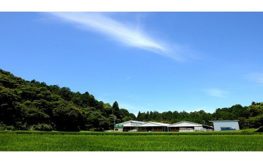 SS-66 松阪牛のローストビーフ(赤身)