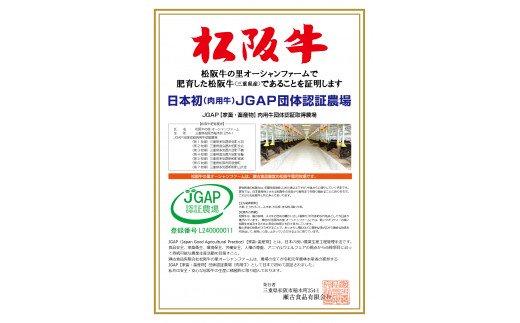 SS-23 松阪牛赤身ステーキ