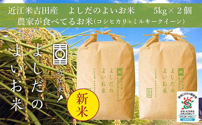令和3年産よしだのよいお米 近江米農家が食べてるお米 5kg×2