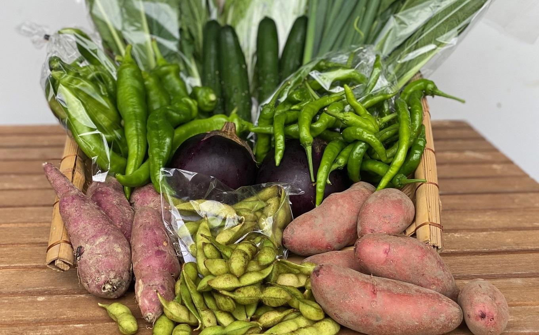 【定期便】6カ月コース 京野菜と地元食品の詰合せ 6カ月間 毎月お届け