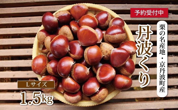栗の名産地・京丹波町産 低温熟成 丹波くり(Lサイズ) 1.5kg