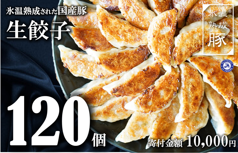 010B736 氷温熟成されたお肉を使った「生餃子」120個