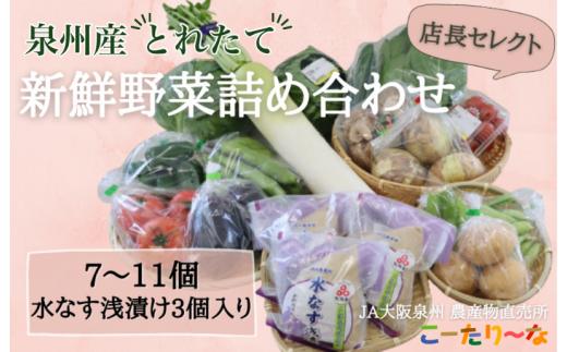 010B589 JA大阪泉州 直売所厳選!水ナス浅漬け・季節の野菜セット