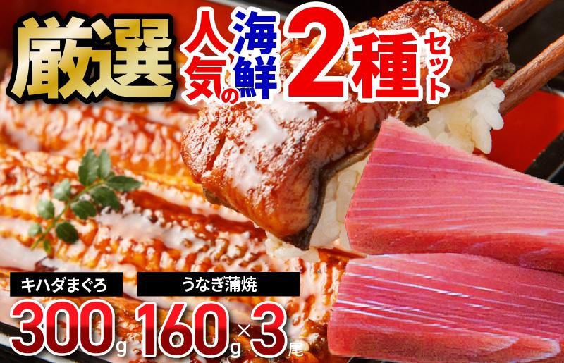 020C139 厳選!人気の海鮮 2種セット(キハダまぐろ赤身ブロック、国産うなぎ蒲焼)