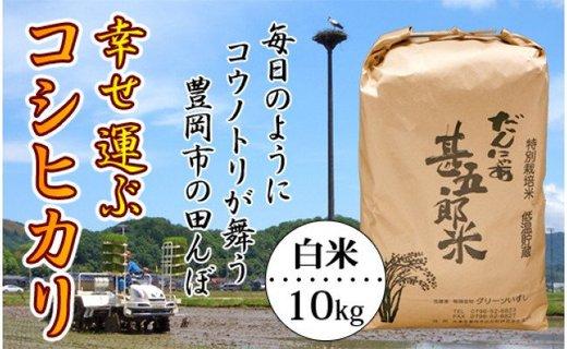 【新米】お米 10kg(白米)幸せ運ぶ コシヒカリ 令和2年産