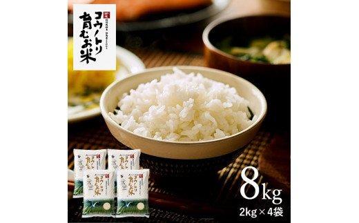 コウノトリ育むお米無農薬【2kg×4袋】(94-001)
