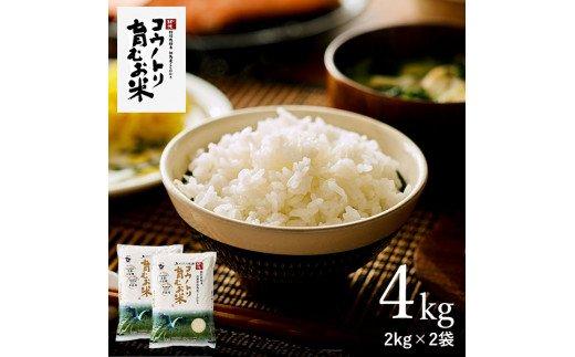 コウノトリ育むお米無農薬【2kg×2袋】(94-001)