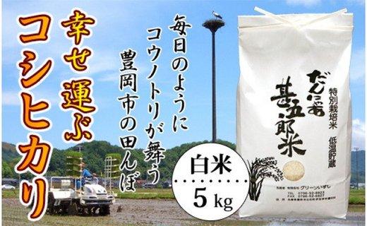 【新米】お米 5kg(白米)幸せ運ぶ コシヒカリ 令和2年産