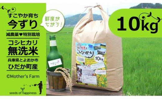 【新米】お米 10kg(白米)今ずり・無洗米 令和2年産 コシヒカリ 兵庫県但馬産