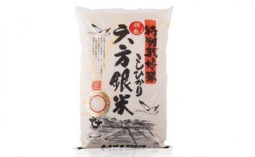 特別栽培米こしひかり 六方銀米 白米5kg
