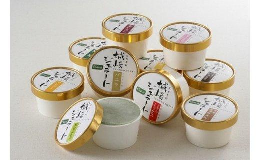 天然素材にこだわった城崎ジェラート 10種のおすすめセット