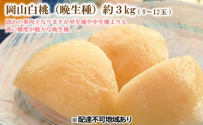 ●先行予約●桃茂実苑 岡山 白桃(晩生種)3kg 9~12玉