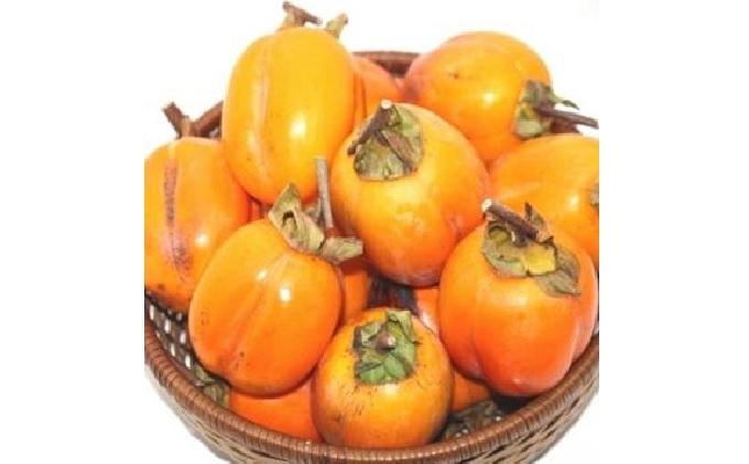 赤磐市産 西条柿(渋柿)干し柿用 約5kg(20~30玉)【配達不可:離島】
