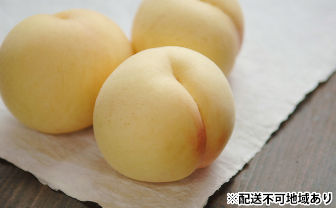 岡山県産 白桃(晩生種)大玉 約2.2kg(6~7玉)