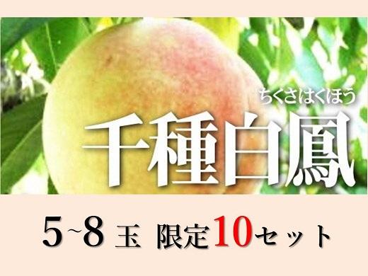 千種白鳳(5~8個)