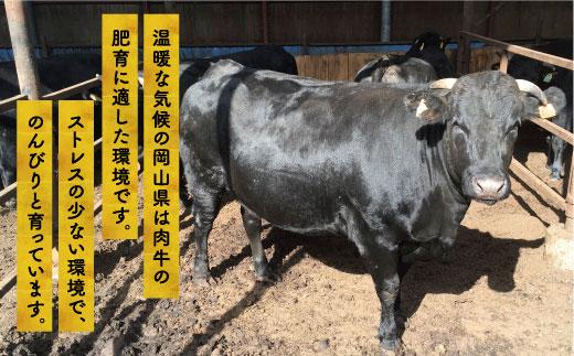 備前牛(黒毛牛)ローストビーフ 400g