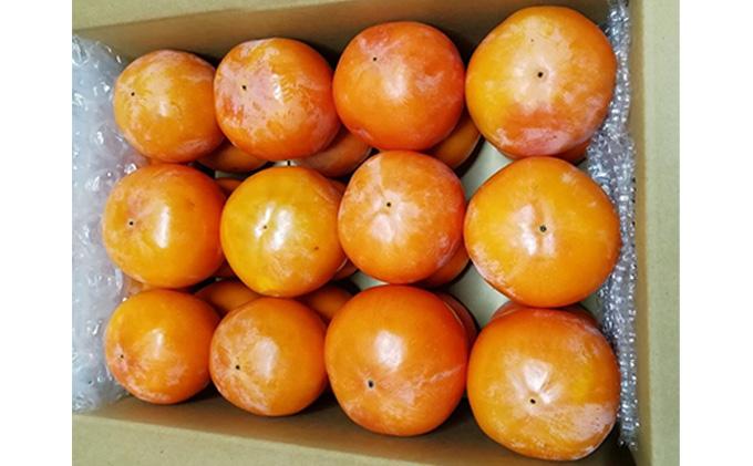 仁科農園産 富有柿(中~大)6kg箱(25個前後入り)