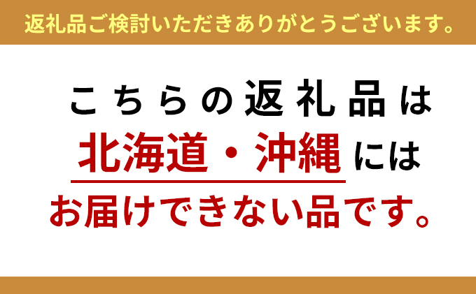 仁科農園産 富有柿(中)6kg箱(30個前後入り)【配達不可:北海道・沖縄】