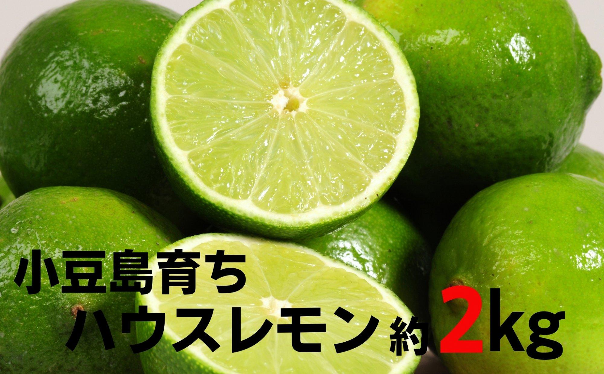 小豆島ハウスレモン 約2kg