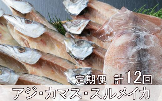 黒潮干物11枚定期便【全12回】