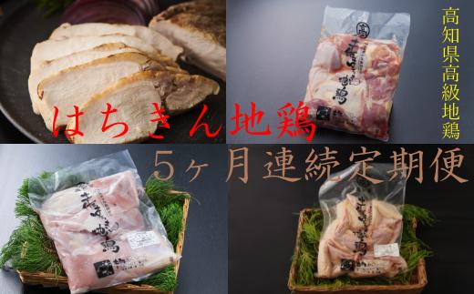 はちきん地鶏定期便【5か月連続定期便】