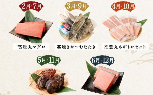 海からの贈り物!マグロとカツオの定期便【5回お届け】