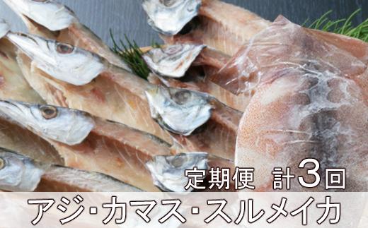 黒潮干物11枚定期便【全3回】