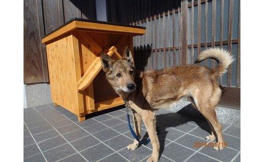 高知県産杉の犬小屋・中型犬コース
