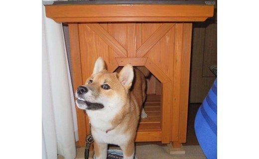 高知県産杉の犬小屋・小型犬コース