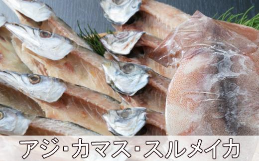 黒潮干物セット(11枚)