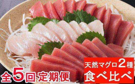 厳選天然マグロ2種食べ比べ定期便【全5回】<遠洋まぐろ漁船漁獲の天然鮪>