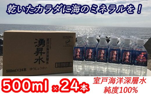 海のミネラルがいっぱいはいっちゅうぜよ【500ml×24本】