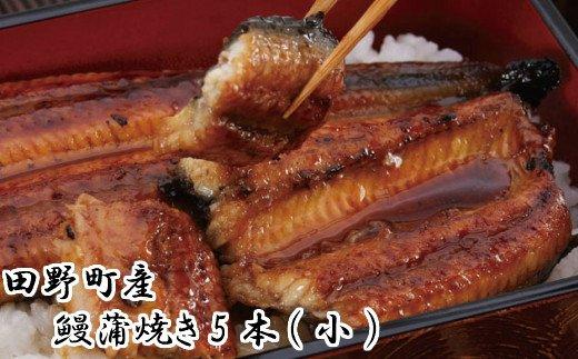 田野町産うなぎ蒲焼き5本(小)
