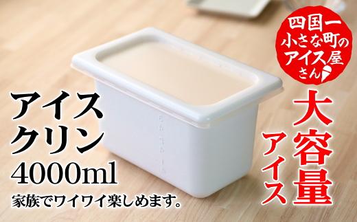【四国一小さなまちのアイス屋さん】≪松崎冷菓≫ 大容量アイス4000ml アイスクリン