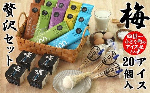 【四国一小さなまち】松崎冷菓の贅沢アイスセット〈梅〉
