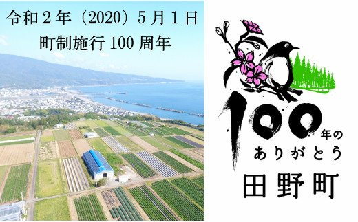 【四国一小さなまち】町制100周年記念オリジナルグッズ(茶塩・手ぬぐい)袋付