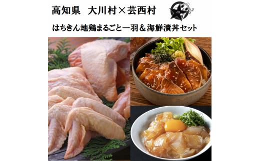 【大川村と芸西村の共通返礼品】はちきん地鶏まるごと一羽おためしセット 約1kg&海鮮漬丼の素セット