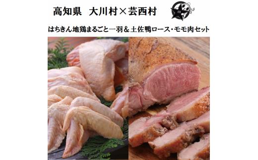 【大川村と芸西村の共通返礼品】はちきん地鶏まるごと一羽おためしセット約1kg&土佐鴨ロース・モモ肉 約1kg