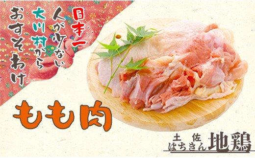 地鶏 土佐はちきん地鶏もも肉 1kg (500g×2パック)